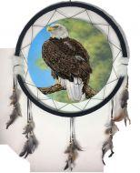 "24"" Eagle Mandala (6 Assortment)"