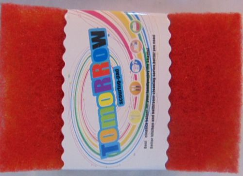10 pc Scouring Pad Pack